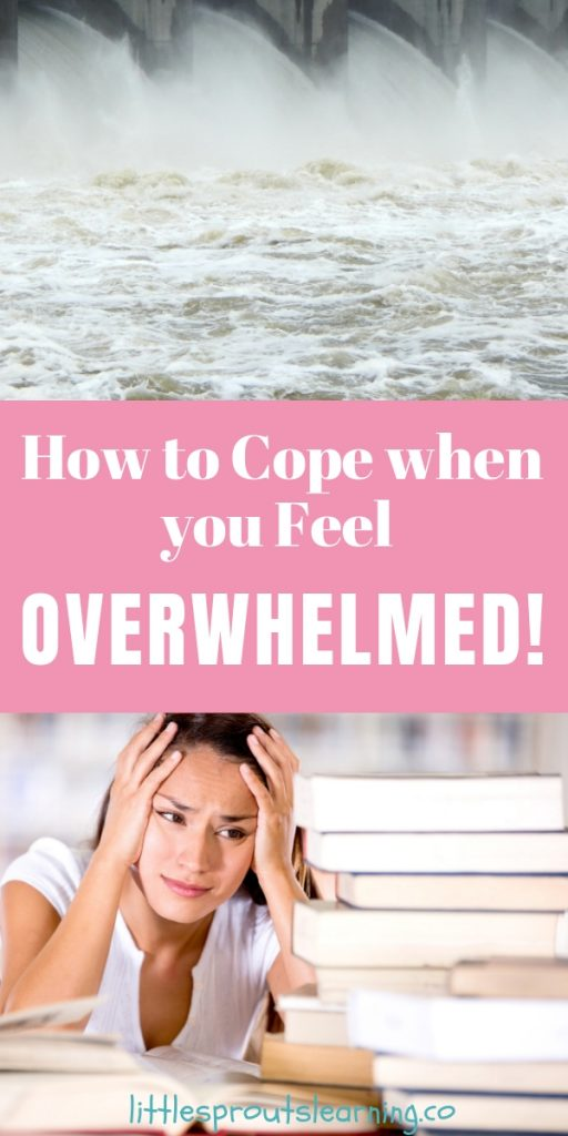 I hear childcare providers and women, in general, talking about being overwhelmed a lot. We all feel it at times. A few steps will help you manage when you feel overwhelmed.