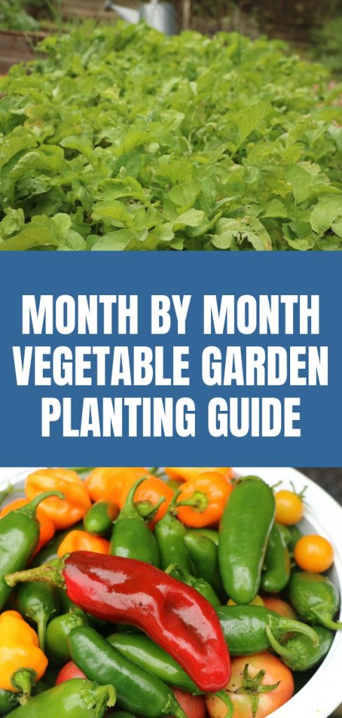 Month by Month Vegetable Garden Planting Guide (1)