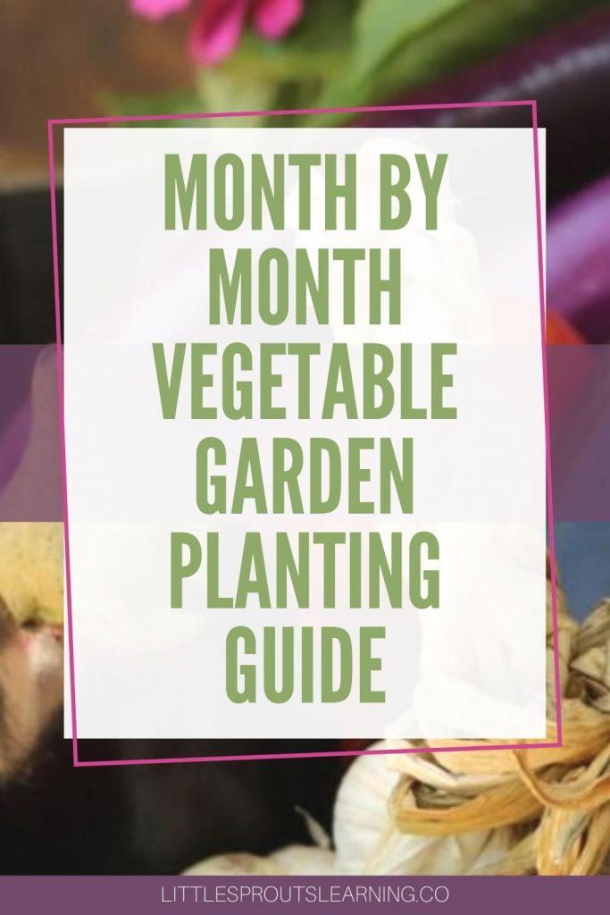 garden vegetables on a shelf