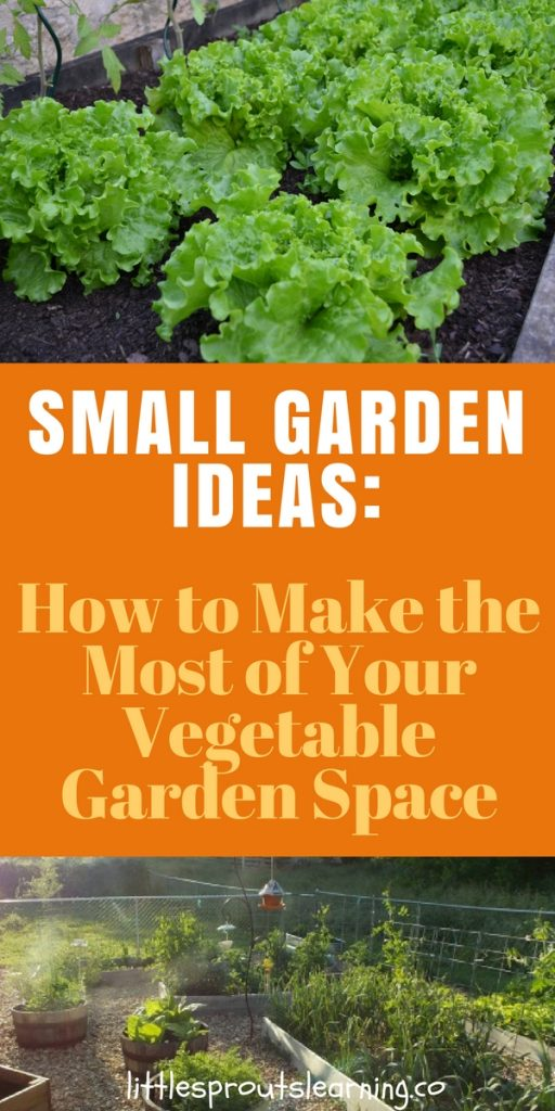 Small Garden Ideas: How to Make the Most of Your Vegetable Garden Space