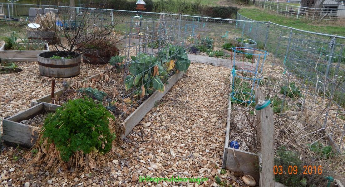spring, garden chores