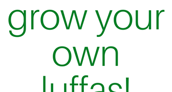 How to Grow Luffas