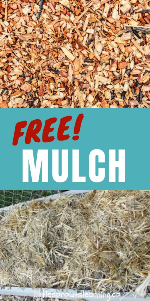 What do you do with all of that leftover material you have in your yard in the fall? There are so many ways to use it. Why use it to mulch your garden?