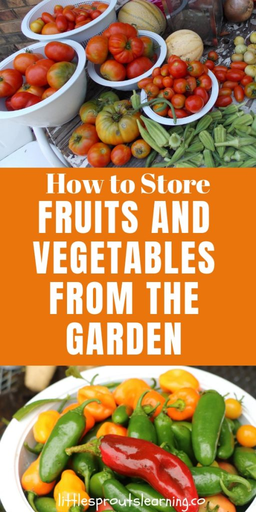 Have you ever looked around after a harvest and felt overwhelmed by produce? You CAN store fruits and vegetables from the garden and make them last!