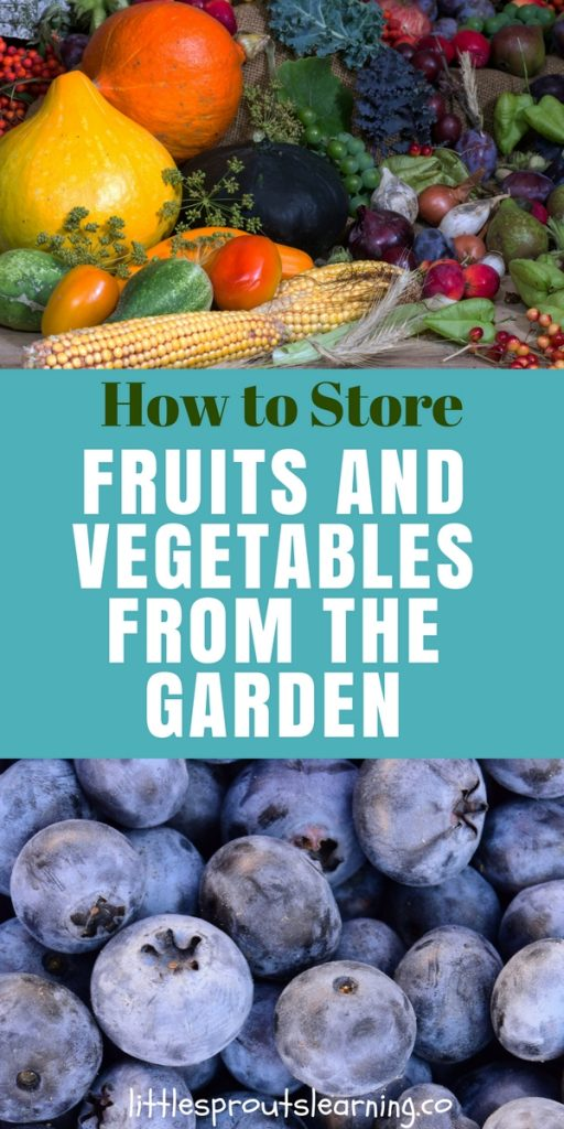 How to Store Fruits and Vegetables from the Garden