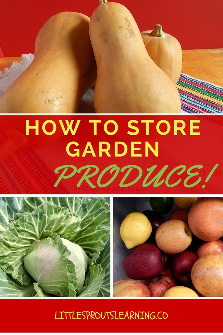 How to Store your Garden Produce