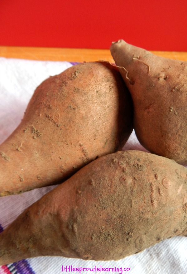 storing sweet potatoes and winter squash