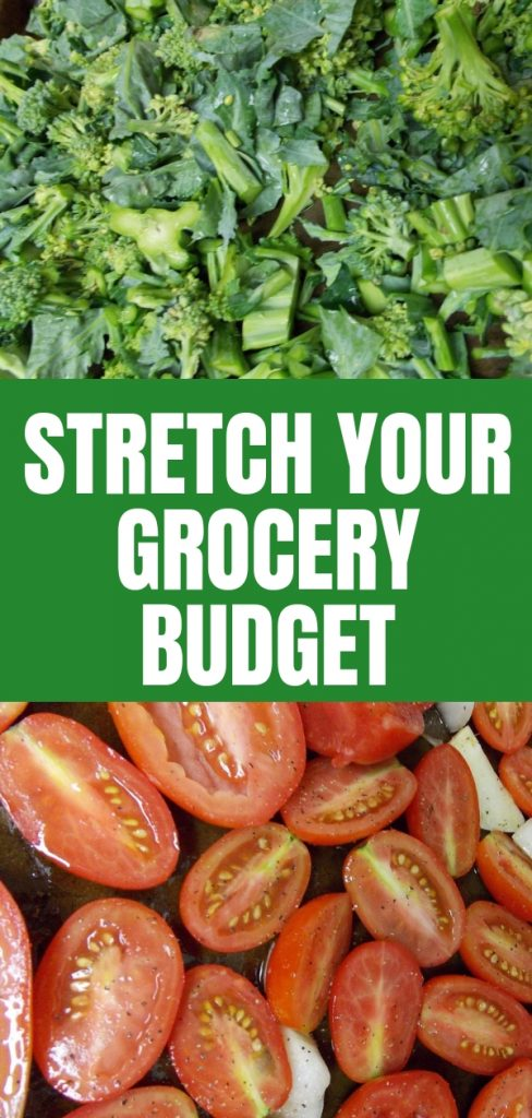 Are you tired of throwing your money away on food waste? Groceries are a big expense for your family. Learn how to stretch your grocery budget.