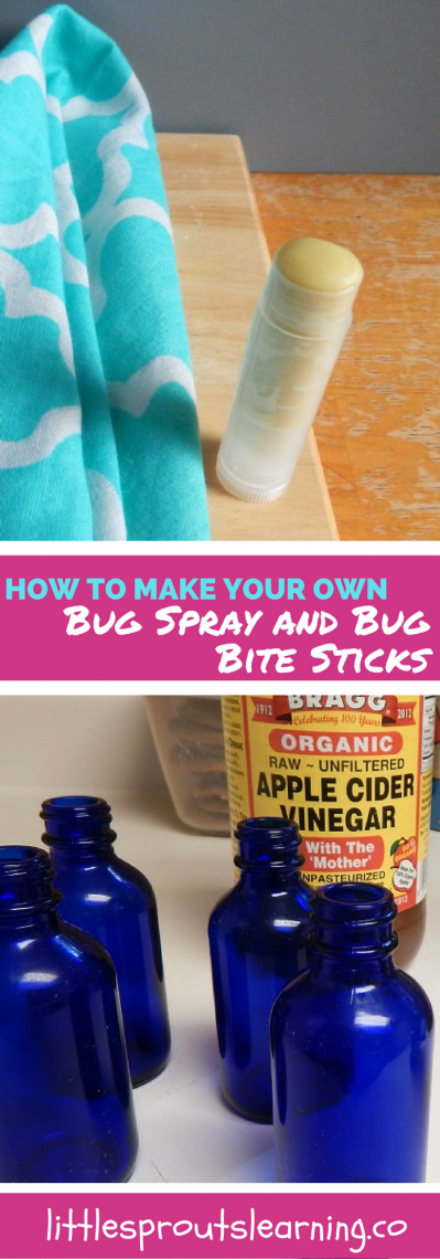 How to Make Your Own Bug Spray and Bug Bite Sticks