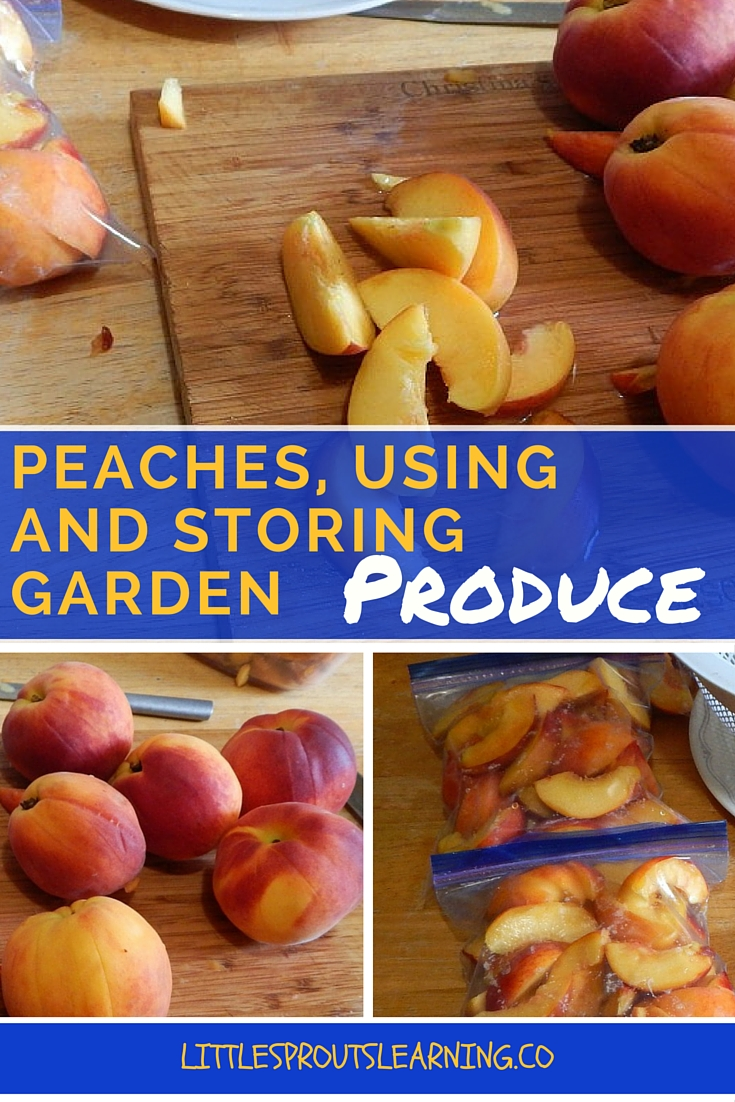 Peaches, Using and Storing Produce