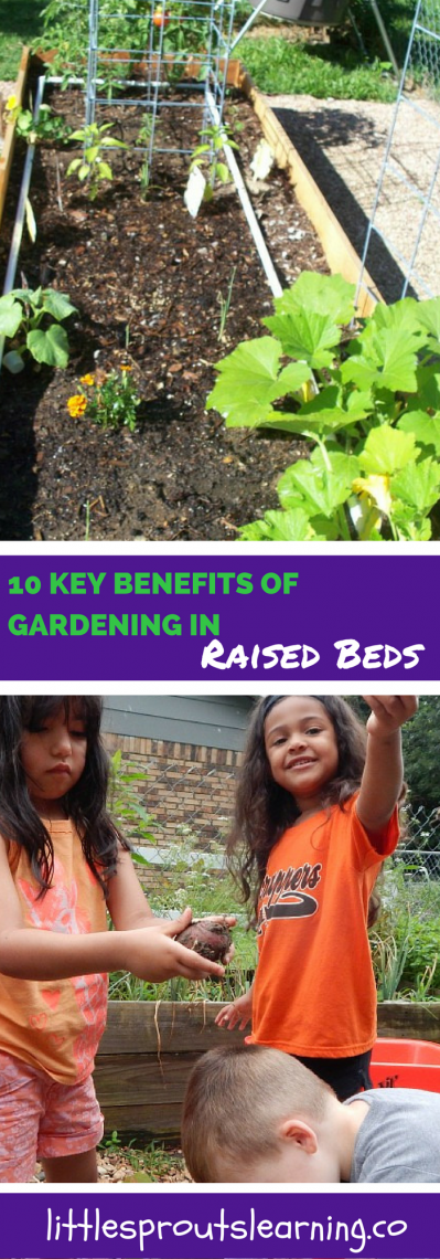 10 Key Benefits of Gardening in Raised Beds