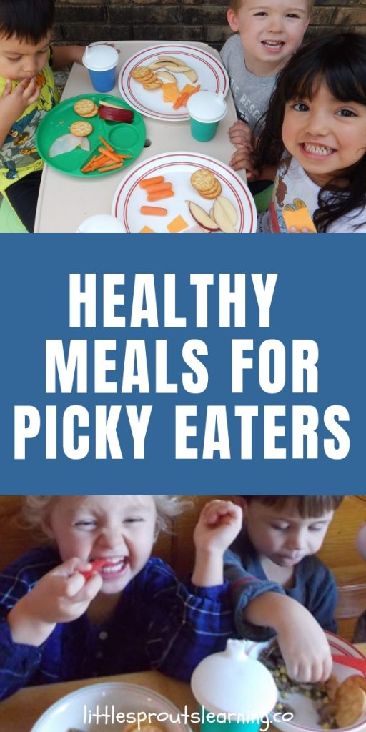 How do we feed healthy meals for picky eaters? They LIKE McDonald's happy meals, but is that what's best for their growing bodies?