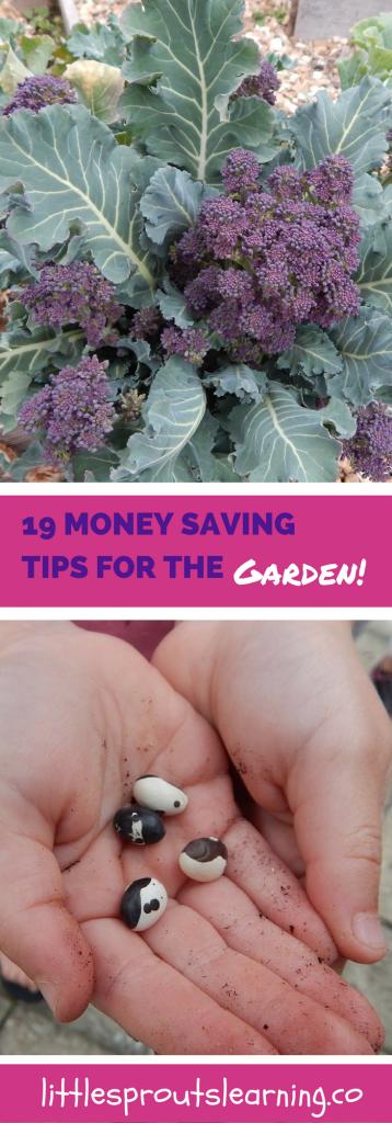 19 Money Saving Tips for the Garden