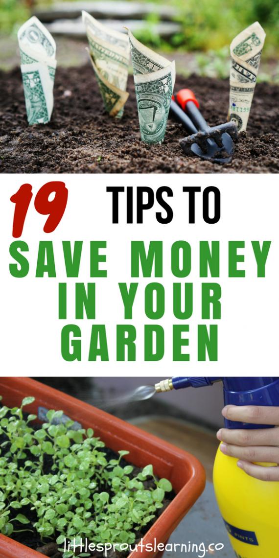 19 tips to save money in your garden - Money saving tips in gardening ...