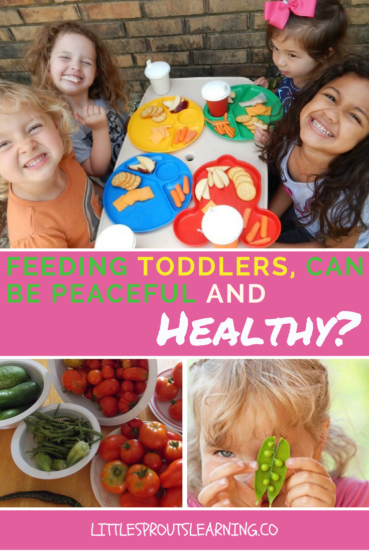 Feeding Toddlers, Can it be Peaceful and Healthy-