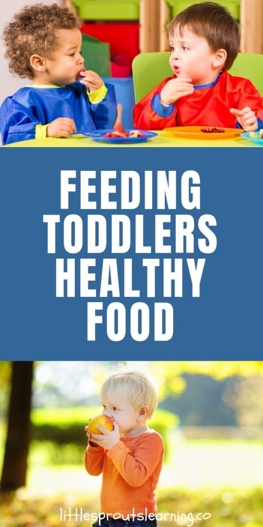 Do you struggle to get your toddler to eat anything much less healthy food? Here are some tips to help you in feeding toddlers healthy food.