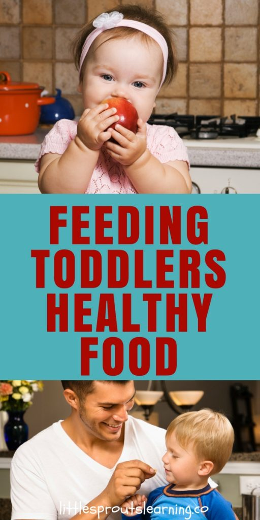 Feeding Toddlers Healthy Food