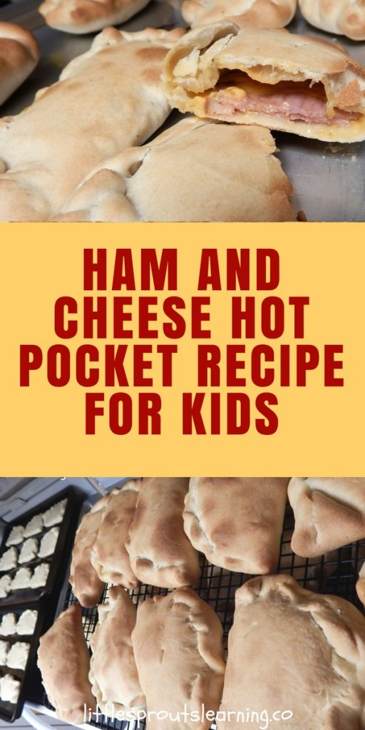 Ham and Cheese Hot Pocket Recipe for Kids