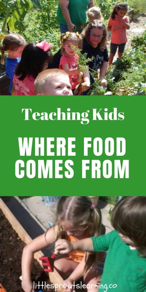 Kids are so far removed from the production of food these days that they have no idea where it comes from or what it takes to produce it.