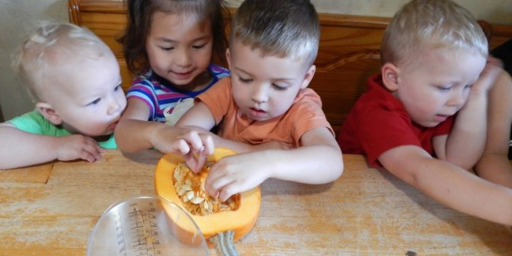 Kids love pumpkins. They make us think of fall and Halloween. Check out this Preschool Pumpkin Theme with ideas that aren't just crafts.