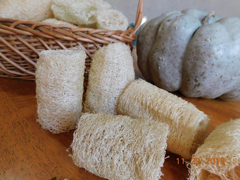 Luffas on the table and luffa in a basket and a pumpkin