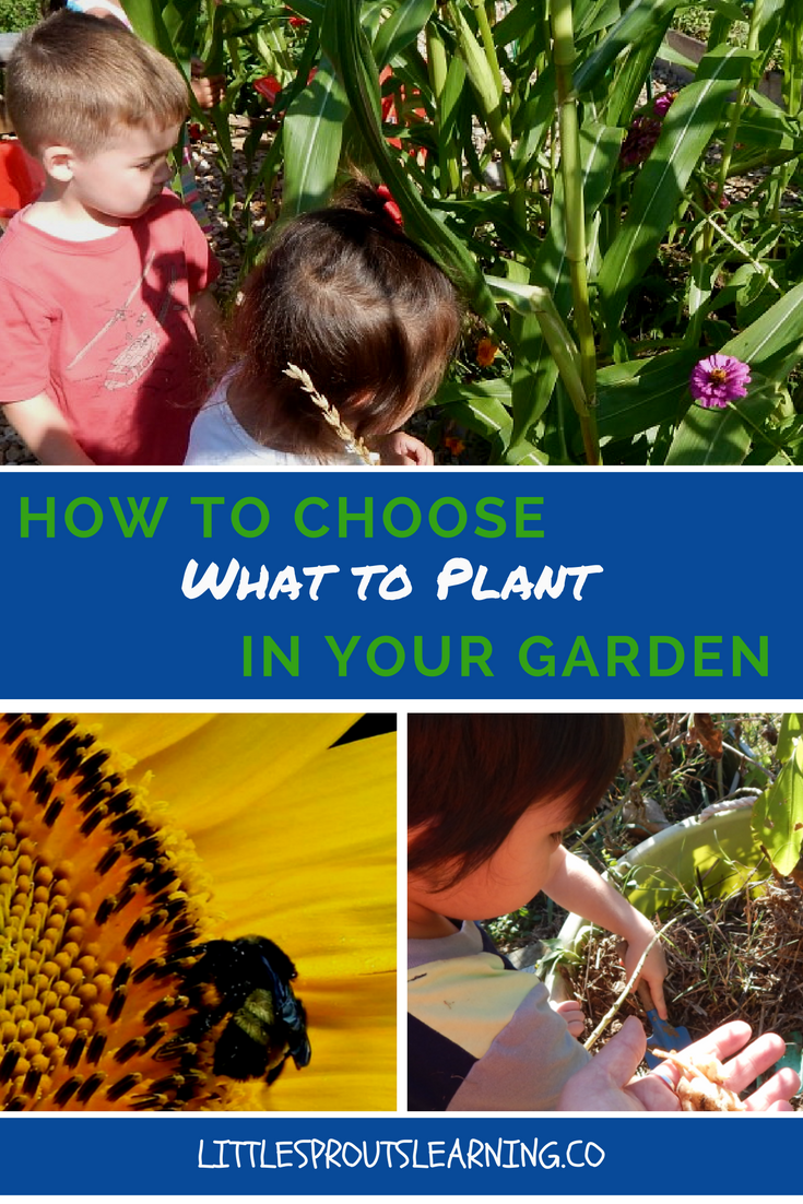 How Do i choose what to plant in my garden?