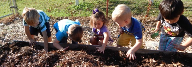 EASY! 5 Steps to Planting a Sensory Garden for Kids