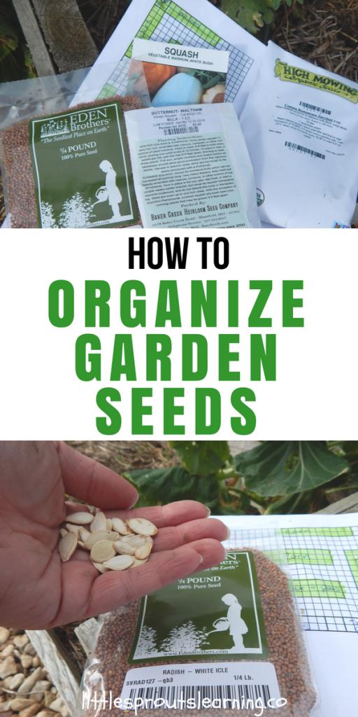 How to Organize Garden Seeds