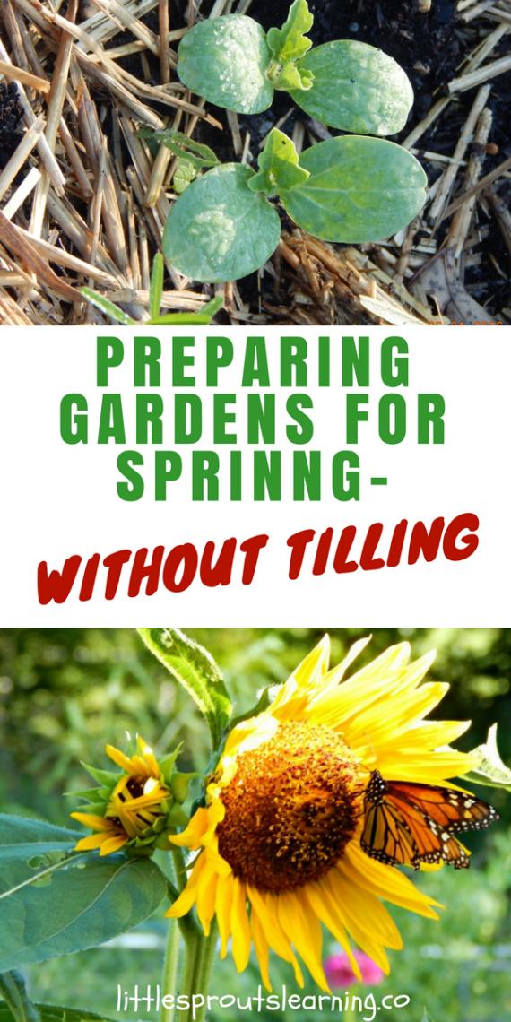 Preparing gardens for spring without tilling for Preparing for spring