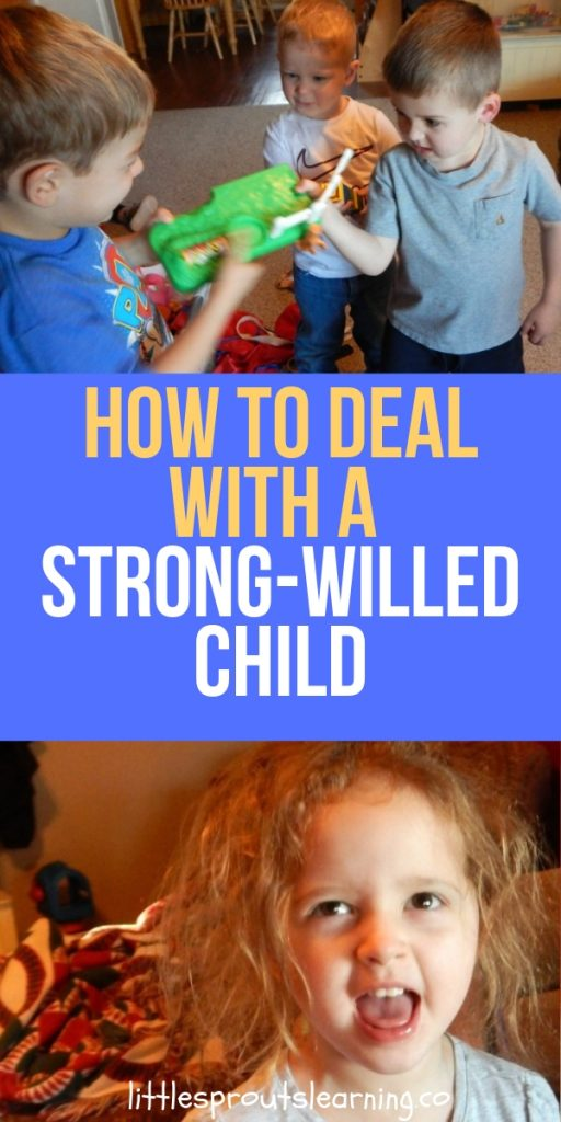 I was a strong-willed child, and I raised one. I know how frustrating it can be to have a battle of the wills with a small child, but there is help!