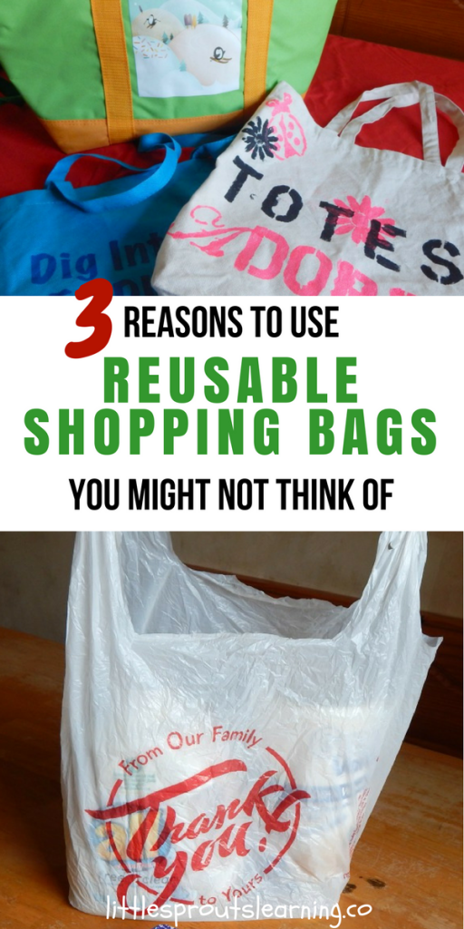 3 Reasons to Use Reusable Shopping Bags