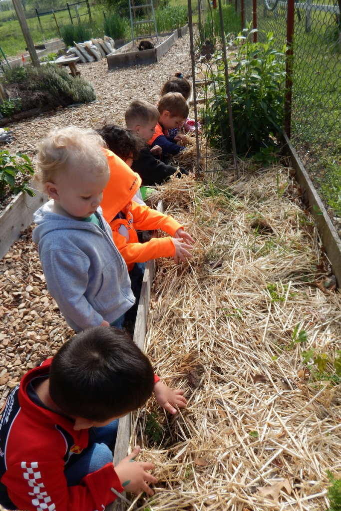 preschoolers planting plants in a sensory garden for kids