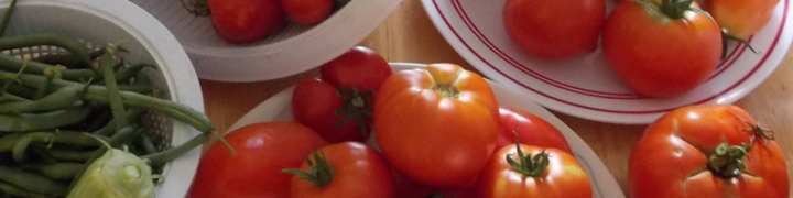 Growing great tomatoes in your home vegetable garden is a passion and an art, but it's not that hard to learn how. Check out these five secrets to growing great tomatoes.