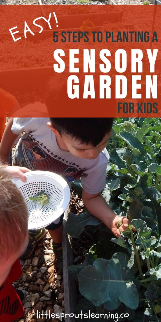 Kids need sensory stimulation for development. Planting a sensory garden for kids is a great way to meet that need! And they can help!