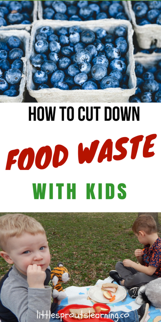 How to Cut Down Food Waste with Kids