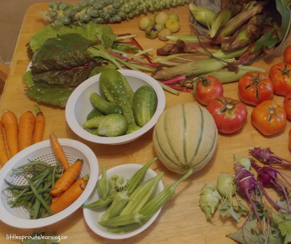 fruits and vegetables from the garden laid out on the kitchen table