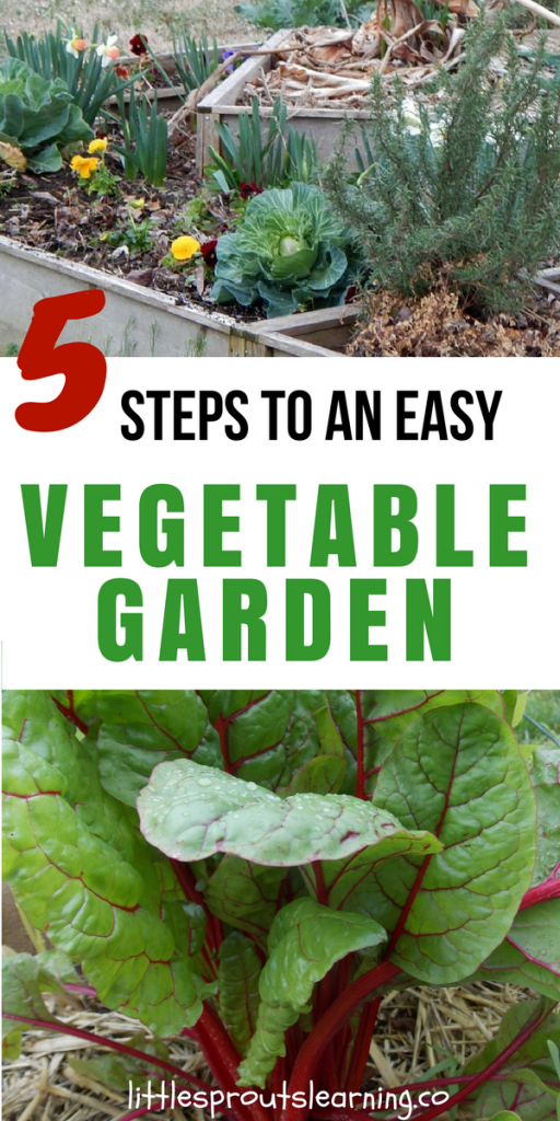 5 steps to an easy vegetable garden little sprouts learning for Simple veggie garden