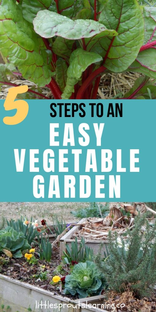 Do you wish you could grow your own food but you don't think you have time? Check out how to grow an easy vegetable garden.