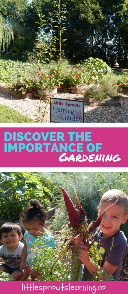 Discover the Importance of Gardening