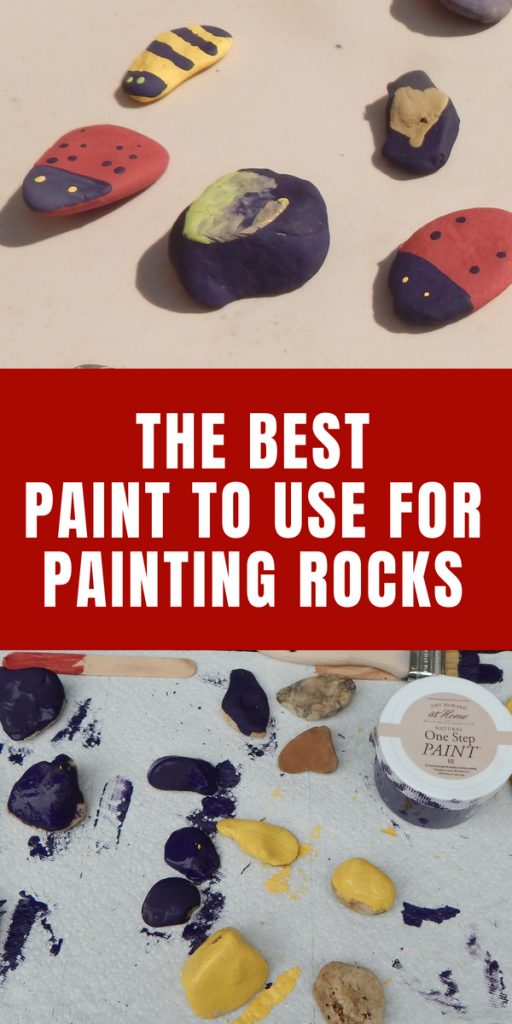 Best Paint to Use for Painted Rocks