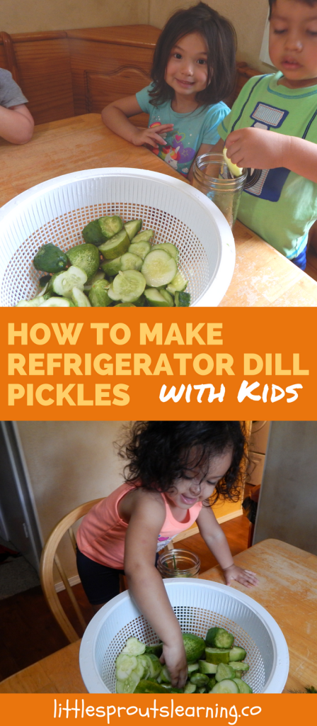 How to Make Refrigerator Dill Pickles with Kids