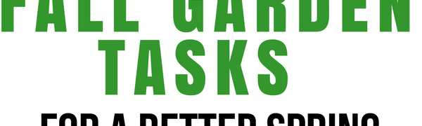 5 Fall Garden Tasks for a Better Spring Garden