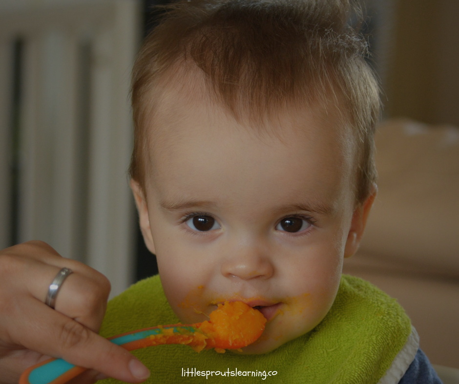 The Ultimate Guide to Making Baby Food