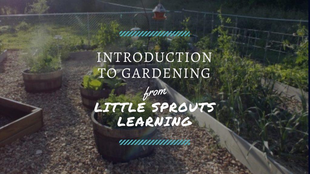 Beginning Gardening Videos