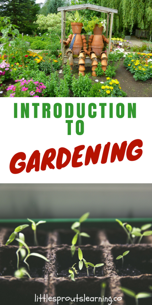 Introduction to Gardening from Little Sprouts
