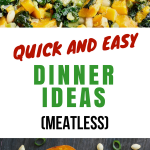 Quick and Easy Dinner Ideas (Meatless Meals)