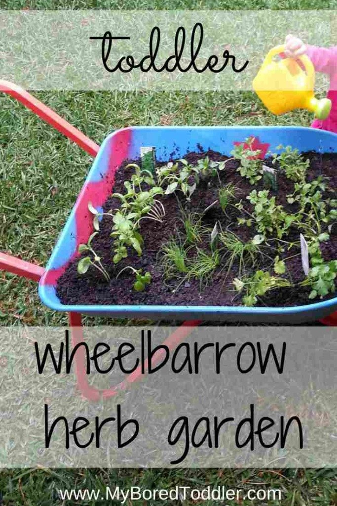 toddler wheelbarrow herb garden