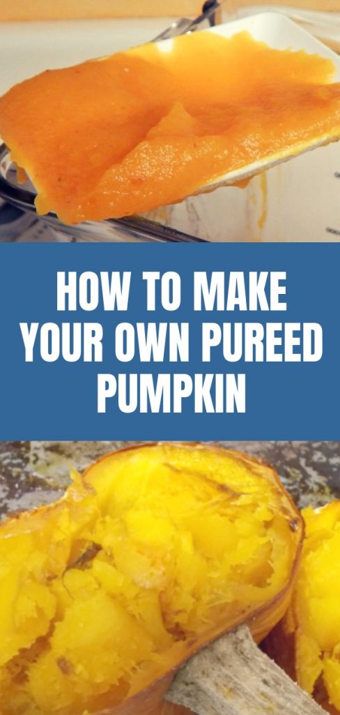 How to Make Your Own Pureed Pumpkin