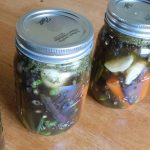 Have you heard of pickling green beans? They are delicious and very easy to make. Make your own refrigerator dilly beans in just a few minutes without canning.