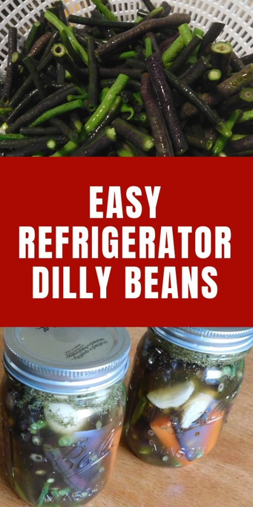 Easy Refrigerator Dilly Beans (5)
